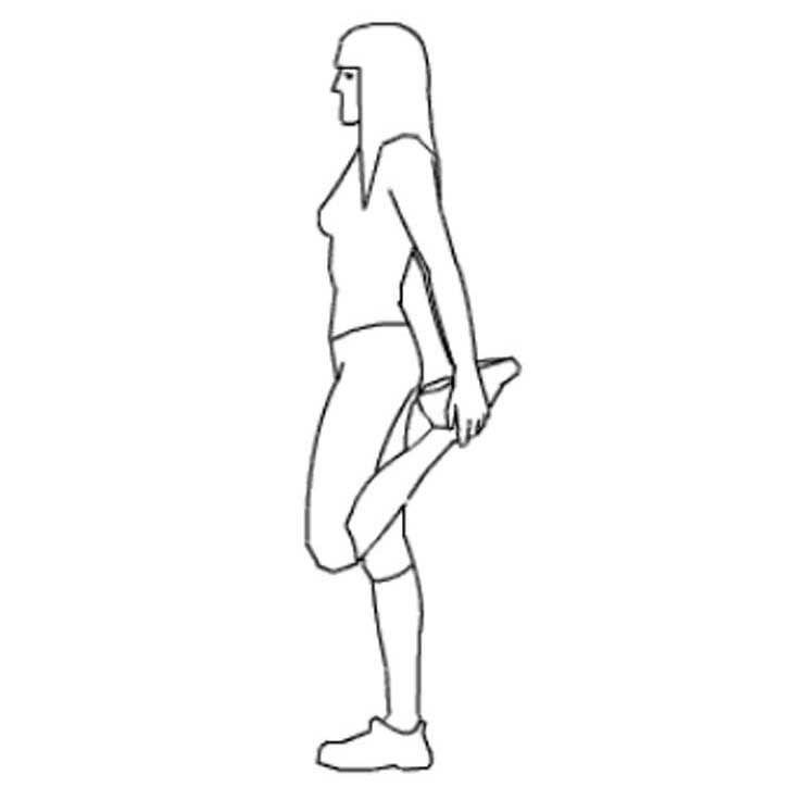 Cuadríceps