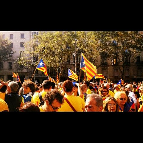 Senyeres al Passeig de Gràcia Barcelona. 19-10-2014 per @JosepCarmona
