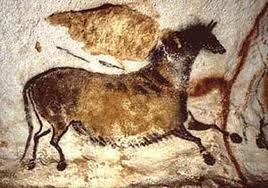 Primitive horses depicted in the Paleolothic cave paintings at Lascaux