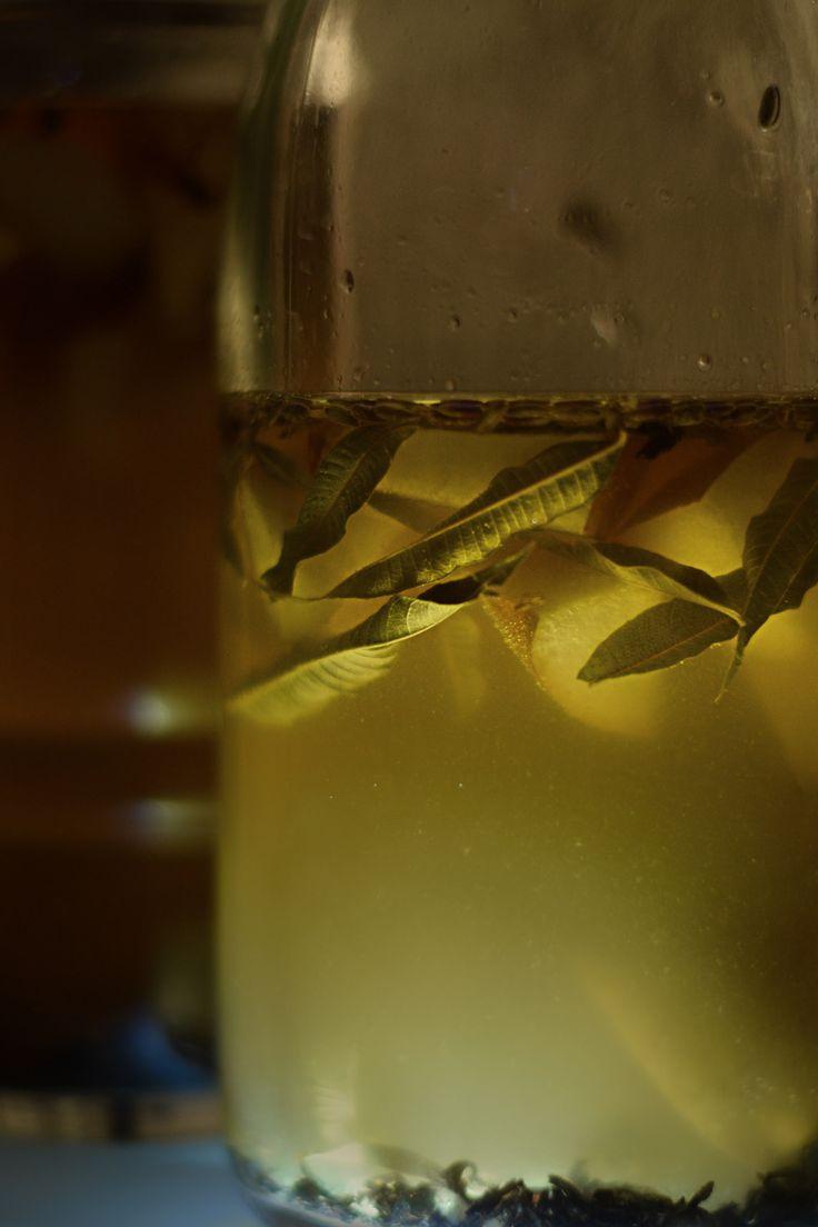 probiotic soda ongoing | Lapsang souchong tea + lavander + lemon verbena + nashi by @sensorytrip on facebook