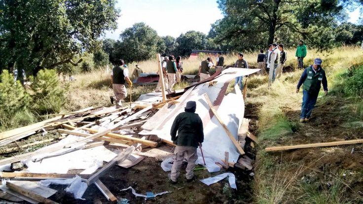 Recupera SEDEMA terreno en suelo de conservación en delegación Tlalpan