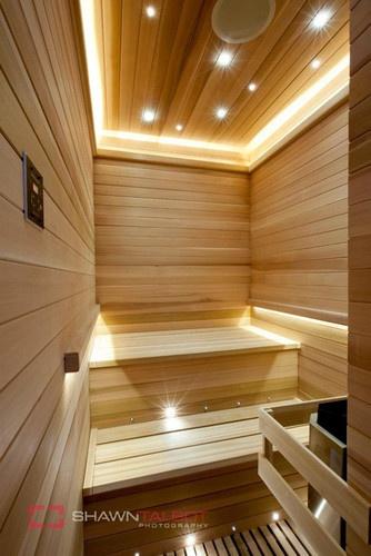 Poolhouse Sauna Room contemporary bathroom
