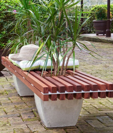 Living bench    Build your own stylish, contemporary hardwood bench and watch it grow on you.