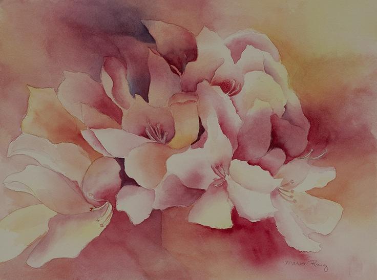 Rhody Watercolor.