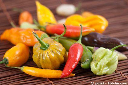 chili peperoni pflanzen balkongarten und balkon g rten. Black Bedroom Furniture Sets. Home Design Ideas
