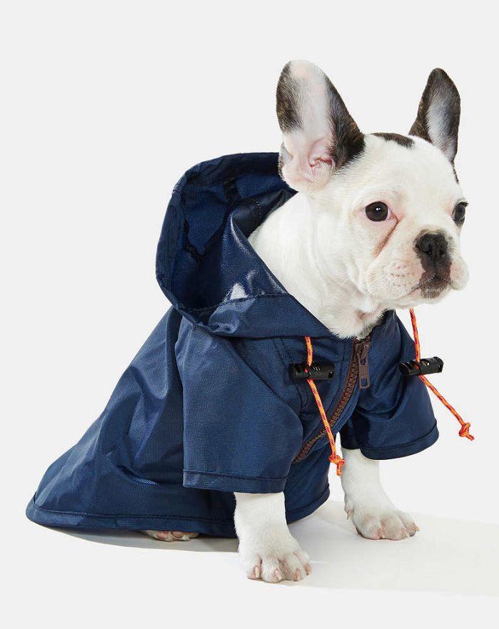 wagwear dog raincoat  http://rstyle.me/n/tbcw6pdpe