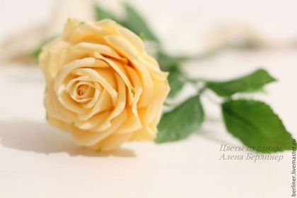 Роза интерьерная - кремовый,роза,Холодный фарфор,реалистичные цветы,реалистичная флористика
