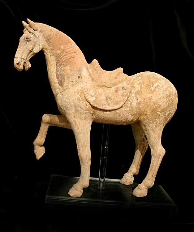 Tang Terracotta Sculpture of a Prancing Horse