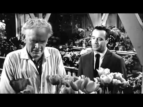 Charles Bickford & Jack Lemmon [DAYS OF WINE AND ROSES] - YouTube