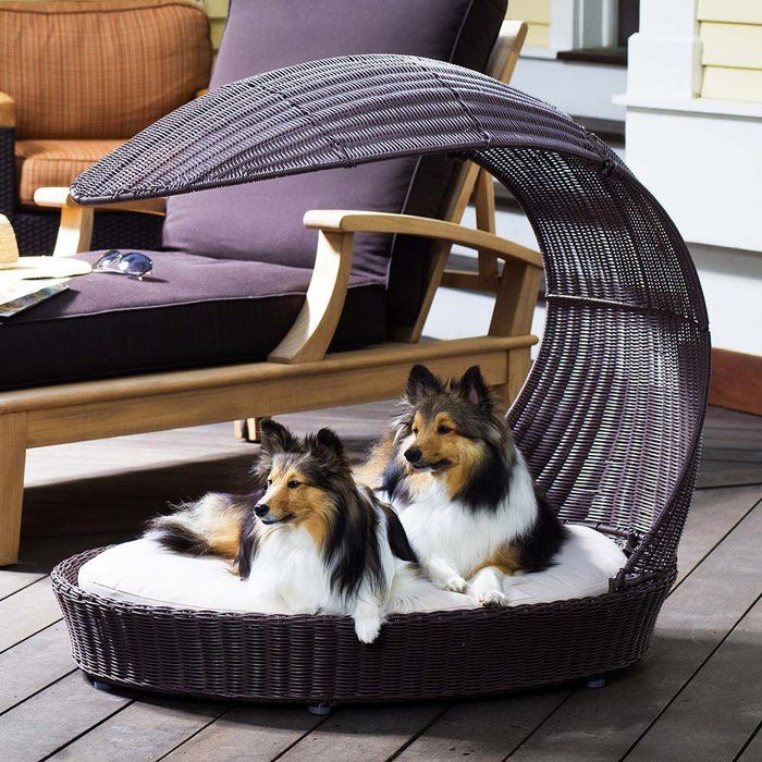 If Your Dog Prefers To Stay Out Of The Sun Then He Needs Refined Canine Outdoor Chaise Lounge Made From A Waterproof Plastic Rattan Material
