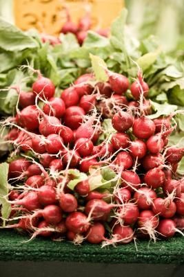 How to Freeze radishes (and what to do with them once you've frozen them)