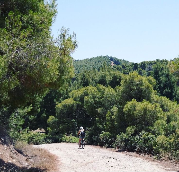 @portocarras is #bike friendly #resort and  provides beautiful #paths for #cycleride!   #summer #vacation  #sithonia #halkidiki #bikefriendly #nature