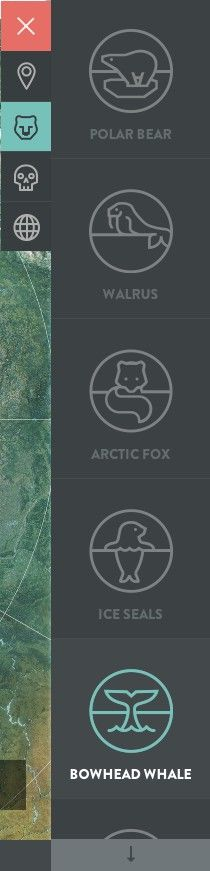 Icons. www.intothearctic.gp