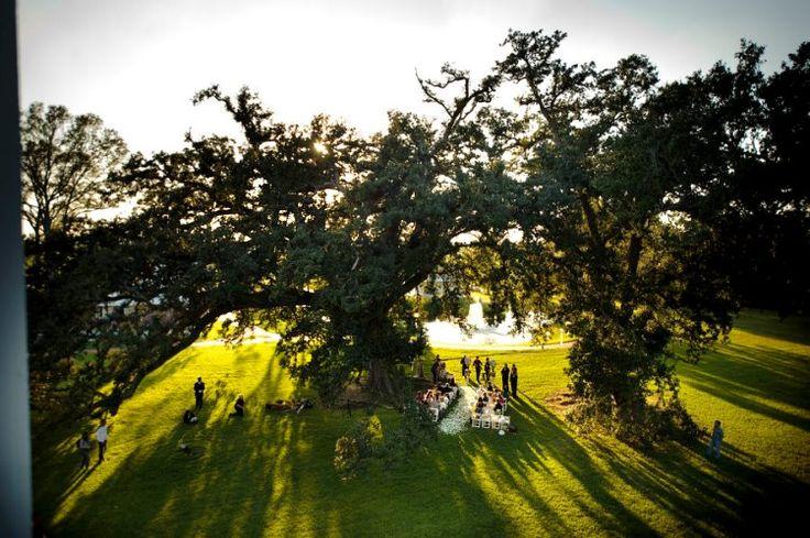 Great Outdoor Wedding Idea Nottoway Plantation Near Baton Rouge Louisiana