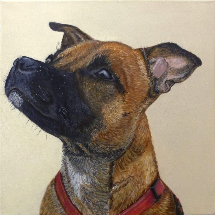Detailed dog painting by  Yvonne artist at atelier Eduard Moes