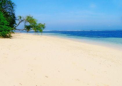 Ujung Genteng : setelah telusur hutan dan ujungnya adalah pantai ini tuh heaven bener rasanya..