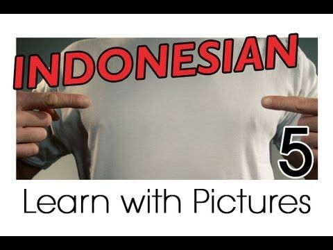Learn Indonesian Vocabulary with Pictures - All Parts of the Body