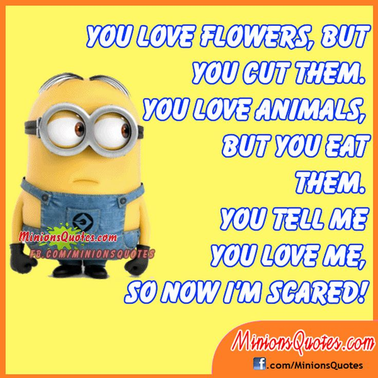 Free Minion quotes gallery (02:45:11 PM, Monday 28, March 2016 PDT) – 10 pics
