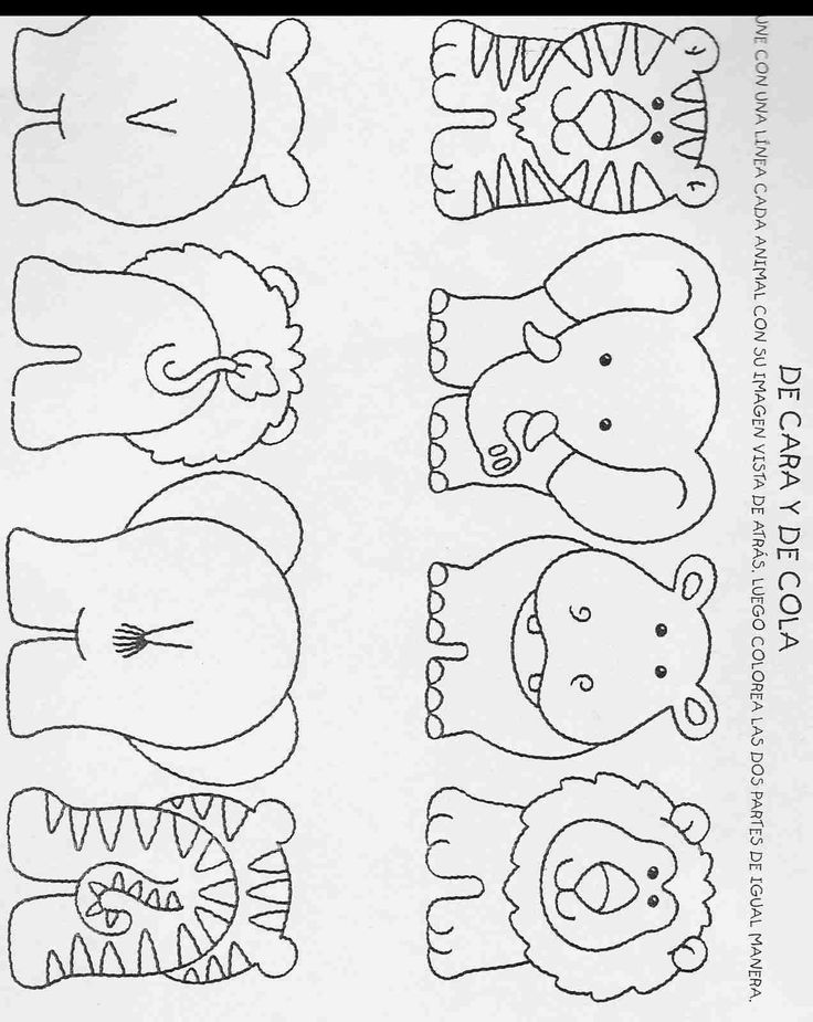 hippo, elephant, tiger, lion template