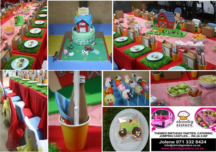A farmyard birthday party set up by Shindig Sisters Party Planners at a farm in Botha's Hill, Durban