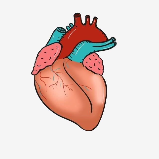 قلب أصفر قلب إبداعي قلب مرسوم باليد قلب كرتون رسم قلب الأصفر Png وملف Psd للتحميل مجانا Heart Hands Drawing Drawing Illustration Anime Art Girl