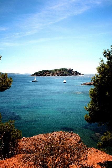 L'île Verte - La Ciotat.