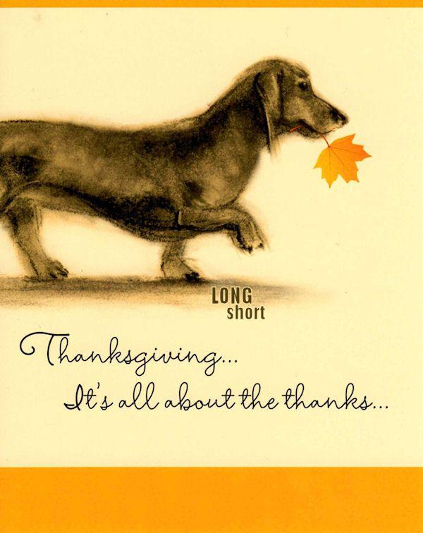 Wednesday, November 24, 2010 Festive Thanksgiving Wishes
