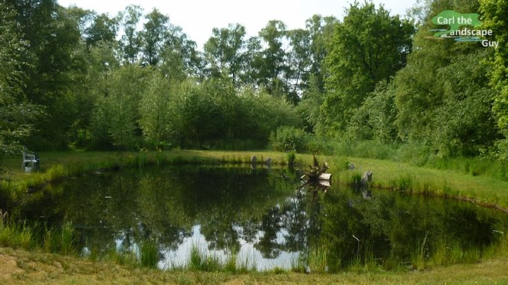 25 best pond liner ideas on pinterest farm pond pond for Big pond ideas