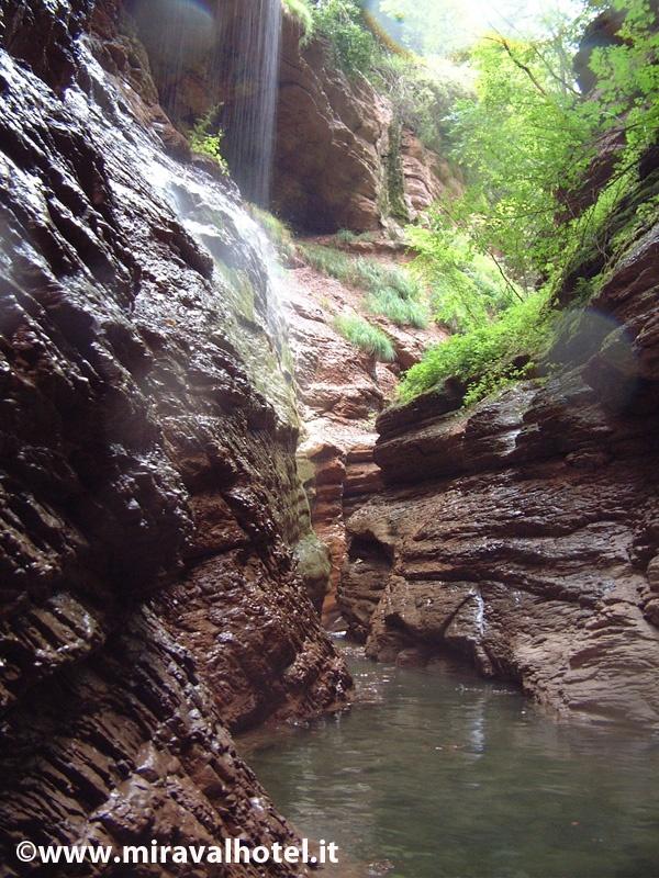 Canyon nascosti del lago di Santa Giustina, una vera meraviglia! #valdinon #trentino #natura
