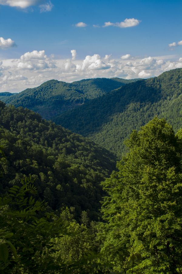 West Virginia Mountains - photo by Kevin Rice