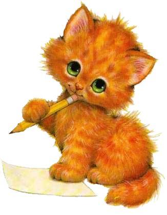 beaux petits chats