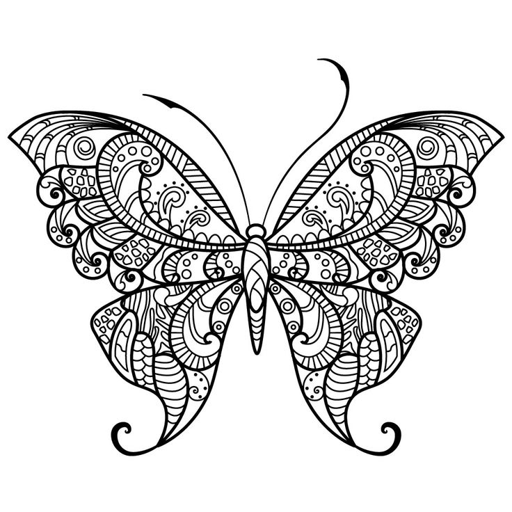 Adult Butterfly Coloring Pages For Android IOS And Windows Phone