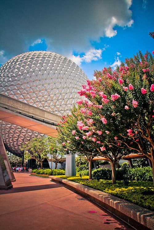 ECLECTIC, YOUNG AT HEART, OPTIMISTIC: I'm a huge fan of all things Disney (even worked there for a while), so I identify strongly with this picture. This juxtaposition between futuristic, mathematical globe in background and the blooming flowers in front and the sky above reflect an optimistic outlook on the future of the coexistance of nature and technology.