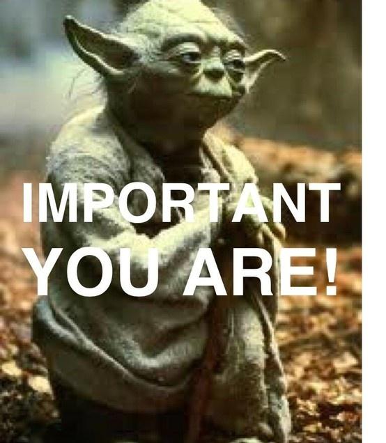 179 Best Yoda Images On Pinterest