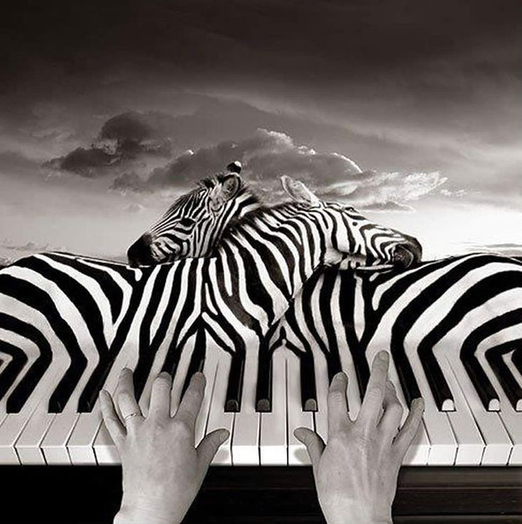 Surrealism photos | Thomas Barbey