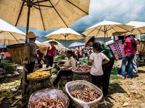 China staat ook bekend om zijn bizarre eetgewoontes en de diverse marktjes waar je bedrijvige marktkoopmannen- en vrouwen, hun waar uitstallen. Slenter langs kraampjes met zeesterren, gefrituurde krekels en zeepaarden op een stokje. Maar maak je geen zorgen; natuurlijk is de rijst ook niet weg te denken uit de Chinese keuken. Vergeet trouwens niet om tijdens je reis te oefenen met het eten met de chopsticks…