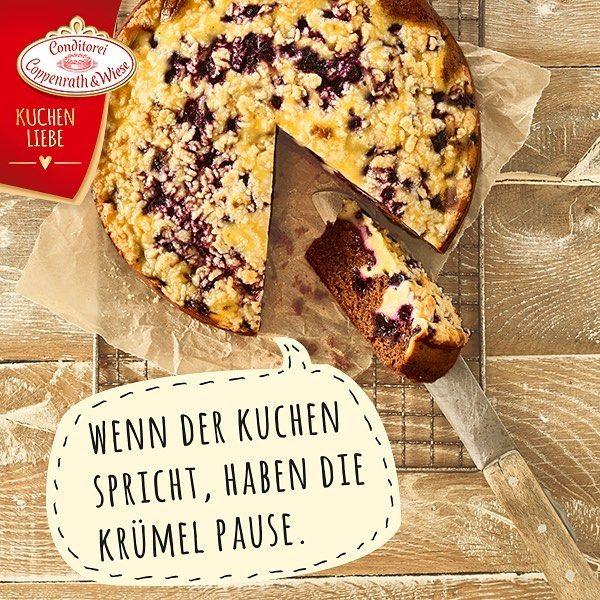 Bergfest Ihr Lieben Zeit Fur Ein Stuck Blaubeer Schoko Kuchen Kuchenliebeblaubeerrahmschokokuchen Torte Kuchen Dess Kuchen Dessert Coppenrath Und Wiese