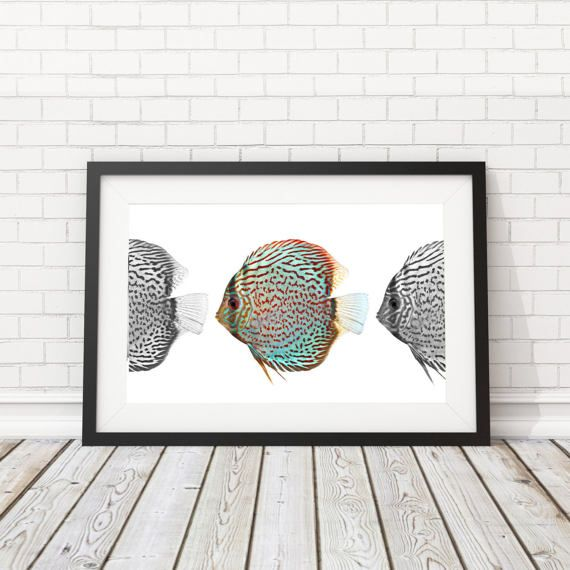 Fish printable Sealife poster Beach House by BatLabPrintables