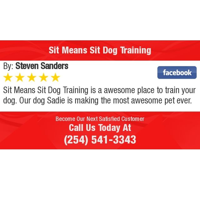 Sit Means Sit Dog Training Is A Awesome Place To Train Your Dog