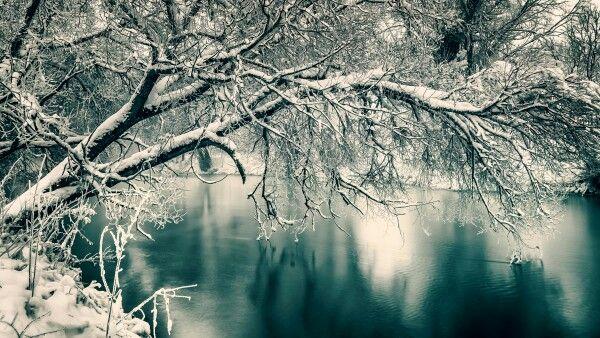"""Neuer Artikel """"Winterstimmungen einfangen, Bildideen planen und umsetzten."""" Entstehung des Bildes """"Sonnenaufgang an einem Fluß bei -18 Grad"""" > http://www.tobiasackermann.eu/wie-geht-das/fotografie-tipps/winterstimmung-und-bildidee.html  Viel Spaß beim Lesen, freue mich über Anregungen und Anmerkungen, auf der Webseite.         #tobiasackermann  #langzeitbelichtung  #Winter  #Landschaftsfo"""