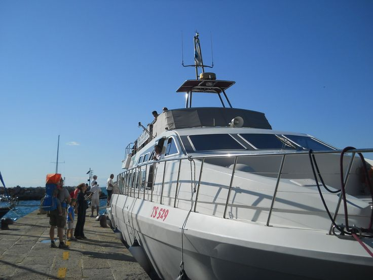 Delfino Verde discover Trieste by boat