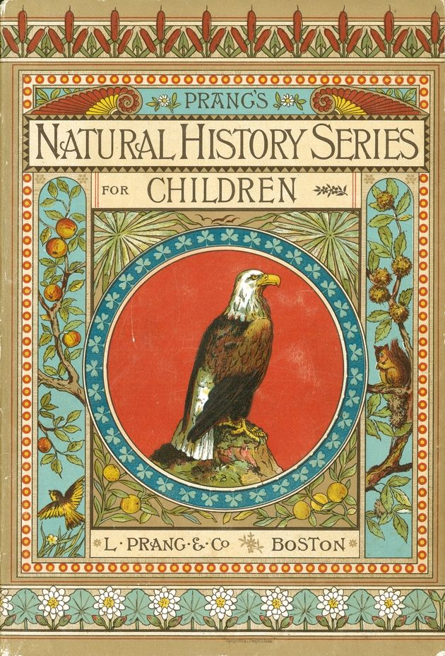 Prang's Natural History Series for Children: Birds of Prey - Cover 1. From the University of Florida Baldwin Library of Historical Children's Literature.