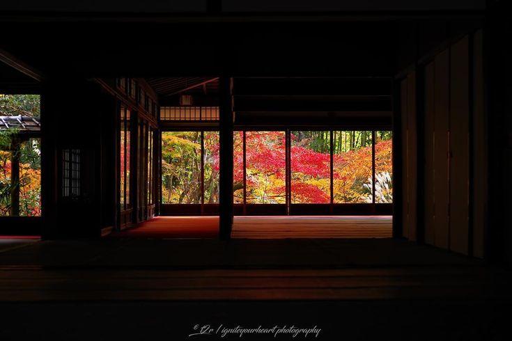 * * _________________________________________ Date : 2017.11.24 * Location : 南禅寺 天授庵 / Nanzenji Temple Tenjuan 京都府 / Kyoto , Japan _________________________________________ この日見頃は過ぎていましたが、この構図は綺麗に映りました😊🍁✨ * 今日は宮崎最後の夜なんで、外に飲みに行きまーす😋🍺✨ * * * * * #天授庵 #南禅寺 #そうだ京都行こう #loves_united_kyoto * #はなまっぷ紅葉2017 #Lovers_Nippon_2017秋コン #Kani_Filter_2017秋コン #wp_紅葉2017 * #whim_fluffy #special_alive_ #myheartinshots #flower_igers #world_bestflower #bestflowerspics #LOVES_GARDEN #superb_flowers…