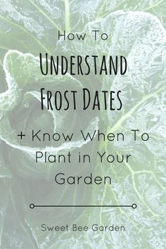 What are some ways to determine the first frost dates?