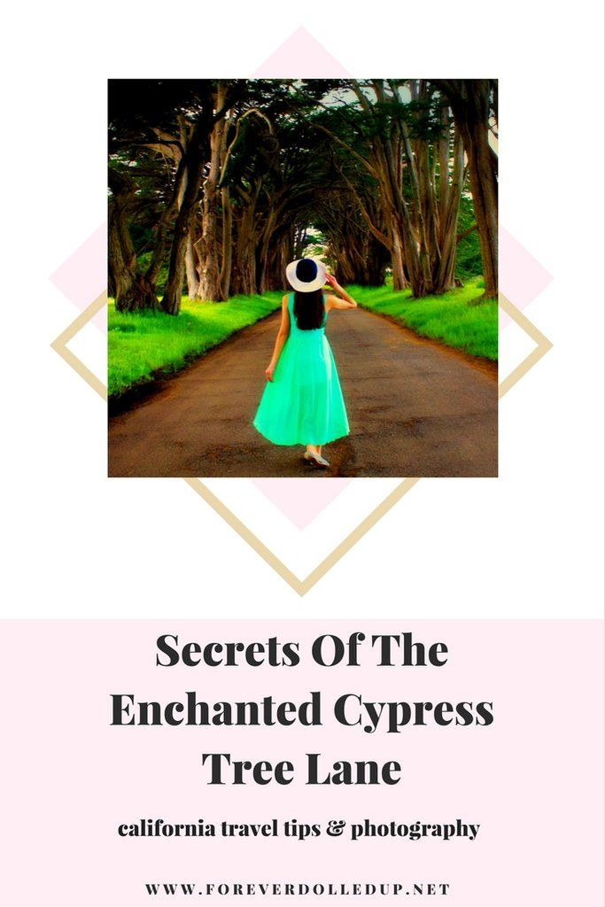 Secrets Of The Enchanted Cypress Tree Lane. travel tips northern california. majestic trees teal maxi dress long brow hair model with hat fashion photography style fashion online boutique and lifestyle blog. shop. forever dolledup