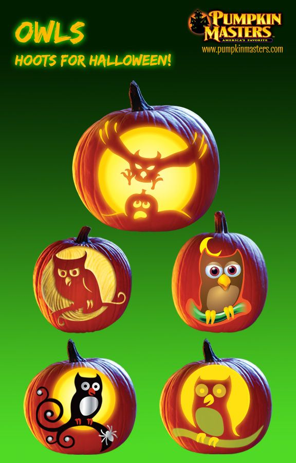 Owls hoots for halloween from pumpkin masters carving kits from top swoop