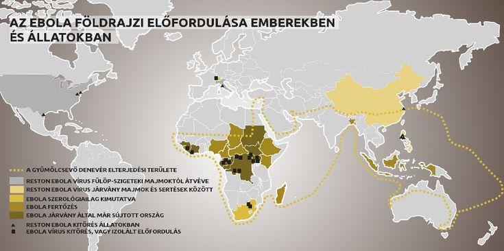 Az ebola vírus előfordulása