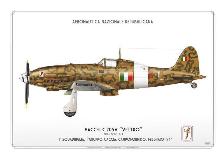 Colori del Macchi 205 -, pin by Paolo Marzioli