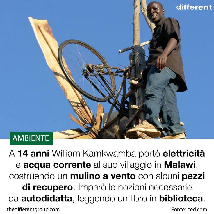 """William Kamkwamba nasce nel 1987 in una famiglia povera del #Malawi. Va a scuola fino ai 14 anni, quando deve abbandonare gli studi per lavorare. Nel tempo libero, legge un libro sull'#energiaeolica: """"Using Energy"""".  A 14 anni, il ragazzo costruisce da solo un mulino a vento usando materiali trovati tra l'immondizia. William riesce a portare l'#elettricità nella sua casa. Il suo sogno diventa così quello di costruire un mulino a #vento ancora più grande per poter irrigare l'intero villaggio."""