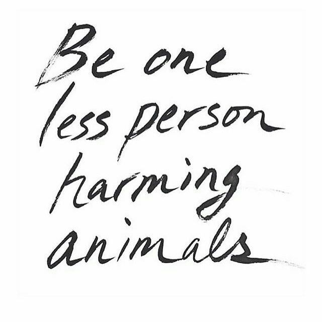 Care for animals.